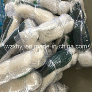 0.28mm Green Edge Monofilament Fishing Net pictures & photos