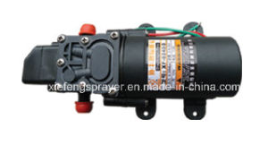 Battery Sprayer Pump pictures & photos