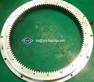 Light-Series Slewing Bearing with Outer Flange (RKS. 220641) pictures & photos