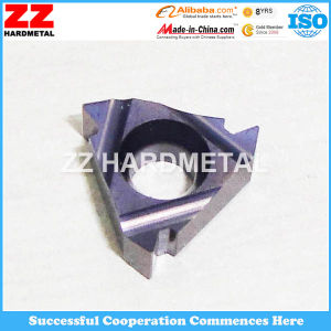 Carbide Inserts for Pipe Threading pictures & photos