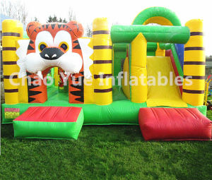 Colorful Inflatable Bouncy Castle, Jumping Castles with Slide (CY-M2073) pictures & photos