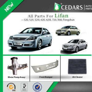 Golden Supplier for Lifan Auto Spare Parts pictures & photos