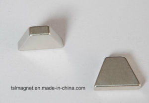 Irregular Permanent Sintered Neodymium Rare Earth Magnet pictures & photos