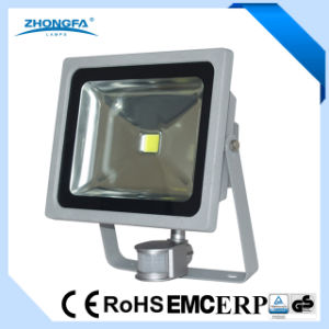 High Quality 50W LED Floodlight with Ce&GS Certificates pictures & photos
