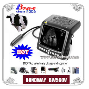 Digital Veterinary Ultrasound Scanner (Wrist-top style)