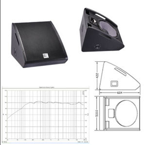 Two-Way, Full Range Stage Monitor Speaker System 15 Inch Passive Monitor pictures & photos