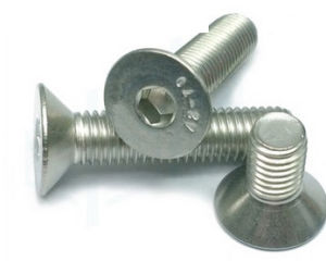 Screw / Fastener / Hardware / Spare Parts / Bolt pictures & photos