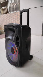 12 Inch Bluetooth Speaker with Trolley and LED (CX-12D) pictures & photos