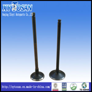 Engine Valve for Honda Accord F22/ CRV/ Civic/ CD100/ CD70 pictures & photos