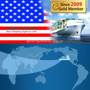 Shipping Rates to From China to USA pictures & photos
