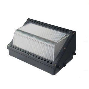 Waterproof LED Wall Pack Light with Meanwell Driver 5 Years Warranty pictures & photos