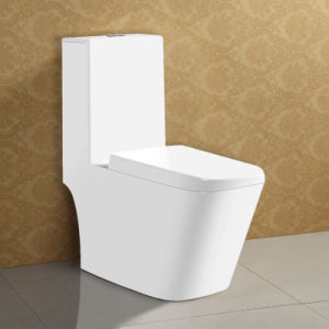 Simple Style Floor Staning One-Piece Toilet