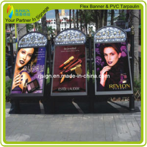 Factory Price High Quality Backlit Flex Banner (RJCB002) pictures & photos