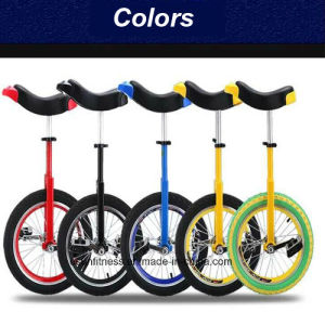 Unicycle Bike Hot Sale in India pictures & photos