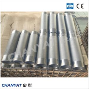 BS3799 3000lb 6000lb Swage Nipple pictures & photos