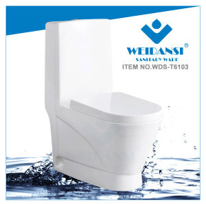 Weidansi Ceramic Wash Down S-Trap One Piece Toilet (WDS-T6103)