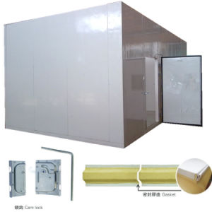Frozen Meat Storage Cold Room by PU Cam Lock Panels pictures & photos