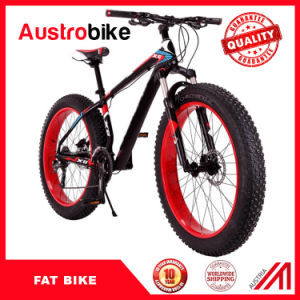 Fat Tyre Mountain Bike Aluminium Fat Bike pictures & photos