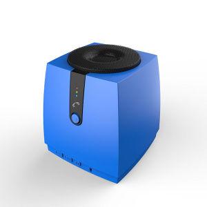 Bluetooth Speaker with FM Radio (HQ-BTSK1015) pictures & photos