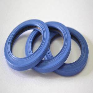 Spring Energized PTFE Seal - Inside Face - PTC pictures & photos