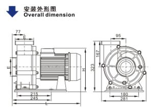 Swimming Pool Pump (WTB) with CE Approved pictures & photos