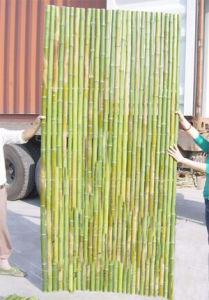 Wood Plastic Garden Fence Wholesale pictures & photos