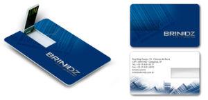 Full Color Printing Plastic Credit Card USB Flash Drive