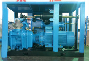Two Stage Energy Saving Screw Air Compressor 200~315kw pictures & photos