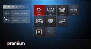 Ipremium Hybrid DVB-S2+DVB-T2+IPTV Set Top Box with Mickyhop Platform pictures & photos