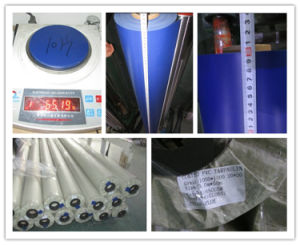 PVC Tarpaulin Manfacturer in Chiina pictures & photos