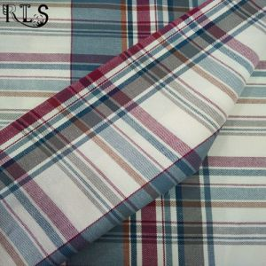 100% Cotton Flannel Woven Yarn Dyed Fabric for Shirts/Dress Rls21-5FL pictures & photos