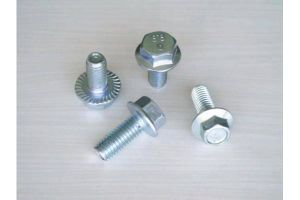 DIN692 High Strength Zinc Grade8.8 Hex Flange Bolt pictures & photos