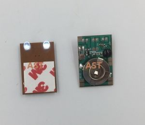LED Flashing Module, Blinking Module, Wireless LED Blinking Module (S-3212B) pictures & photos