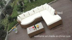 Wicker Sectoinal Sofa Set/Garden Furniture/Rattan Sofa Set/Rattan Outdoor Sofa pictures & photos