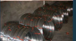 Hot Dipped Oval Steel Wire for Fening/Farm Using pictures & photos