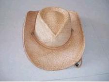 Straw Hat Cowboy Hat (Q-08) pictures & photos