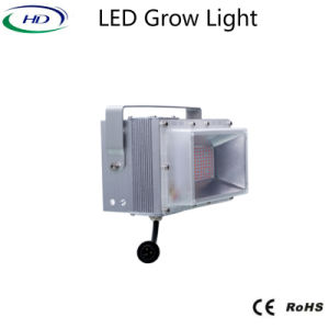 400W LED Grow Light Module Series Ce RoHS Approved pictures & photos