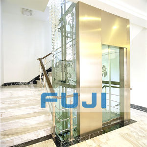 FUJI 320kg Small Home Glass Elevator Lift Price in China pictures & photos