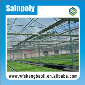 Sainpoly High Standard Transmissivity Glass Greenhouse pictures & photos