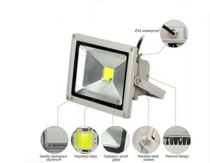 China Factory with Ce RoHS 10W LED Flood Light pictures & photos