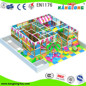 High Quality Indoor Playgrounds for Indoor Use and Kids From 3-12 Years (TQB-0377) pictures & photos