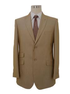 Men′s Tr Leisure Suit (PL008)