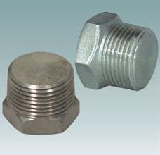 Pipe Fitting Plug pictures & photos