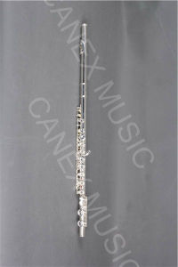 Cupronickel Flute (FL16K-S) /Flute/Student Flute/Musical Instruments pictures & photos