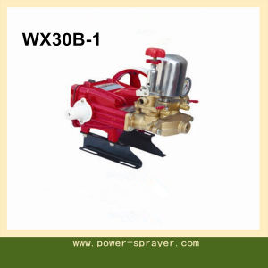 30mm Manual Voltage Regulation Agriculture Use 3-Plunger Power Sprayer Wx30b-1 pictures & photos