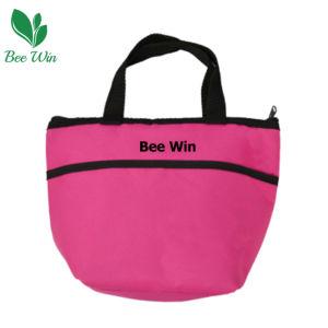 Fashionable Cooler Bag for Picnic (BW-6081)