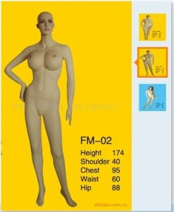 High Quality Fiberglass Mannequins Torso 1021 pictures & photos