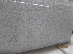 Granite G439 Big White Flower Slab for Countertop pictures & photos