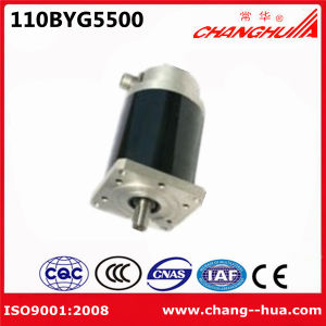 Five Phase AC 30-300V Step Motor (110BYG5800)