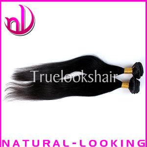 Top Quality Excellent Service Virgin Brazilian Virgin Human Hair (NL2602)